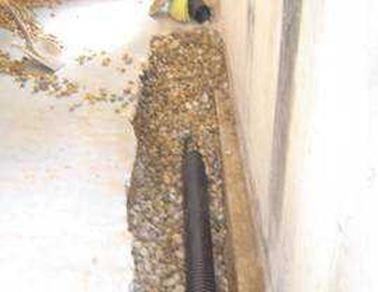 How A French Drain In Your Bat Will Keep It Dry