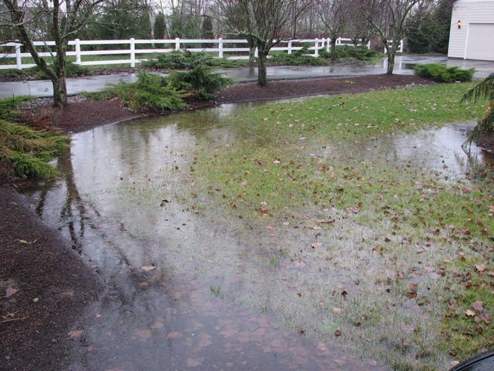 Good Yard Drainage Can Prevent a Wet Basement in Chicago