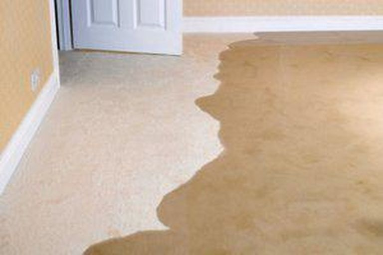 Every Homeowner Needs To Know About Wet, Wet Basement Flooring